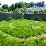 Grass Tracks – an Outdoor, Active, and Imaginative Train Game