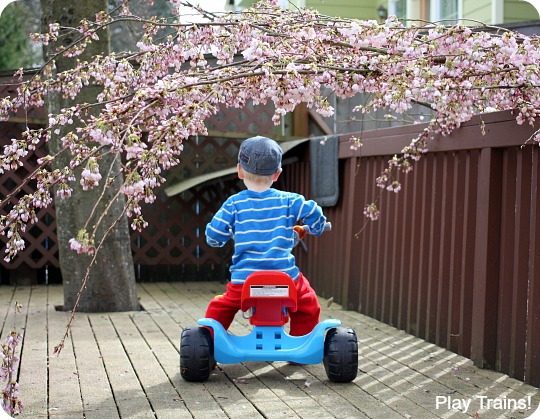Cherry Blossom Tunnel: Spring Outdoor Activity for Kids