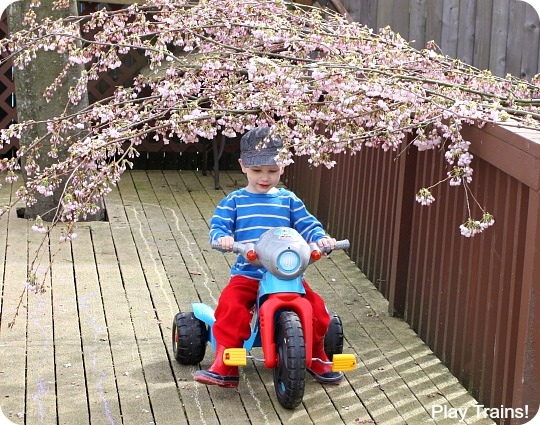 Cherry Blossom Tunnel: Outdoor Spring Activity for Kids from Play Trains! A fun combination of gross motor and sensory play.